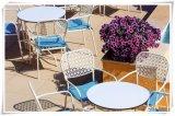 De witte koffietafel van de Melamine van de Kleur Vierkante Commerciële