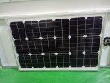 panneau solaire de module solaire monocristallin approuvé de la CE de 65W TUV