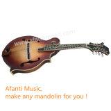 Le sapin solide d'Afanti D.C.A./a flambé la mandoline de l'érable F (AM-F95MK)