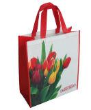 Новый мешок конструкции, хозяйственная сумка, Non сплетенный мешок, самый дешевый мешок