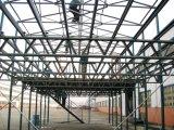Taller y almacén de la estructura de acero de China con el bajo costo (edificio de acero de la construcción)