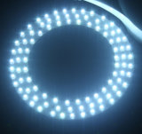 LED 돋보기 못 배려 아름다움 기계 (H3007)를 확대하는 병원 형광