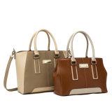Beste het Verkopen Manier Pu Dame Tote Shaped Handbag (c71052-1)