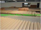 Guichet de PVC de WPC et chaîne de production de profil de porte Sjsz-80