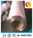 Bobine en acier galvanisé inoxydable pré-imprégné de première qualité PPGI de haute qualité