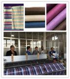 Telar de alta velocidad del jet del aire del telar de la tela de /Cotton