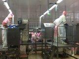 Type à chaînes automatique machines de nourriture de trieuse de poids