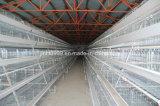 Frame da gaiola da galinha do equipamento das aves domésticas para o uso da exploração agrícola