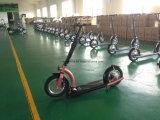 36V/300W 2 바퀴 리튬 건전지 전기 소형 Foldable 스쿠터