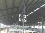 Ventilazione Cooling Fan per Dairy House