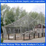 Red del cable del acero inoxidable para el recinto del parque zoológico