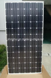 Panneaux solaires photovoltaïques monocristallins Panneau de 300 watts avec module IEC