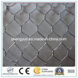 高品質の低価格電流を通された六角形ワイヤー網
