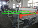 PP/PE de dubbele Plastic Machine van het Blad van de Laag (sj-90/33)