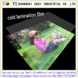 Film protecteur de laminage de film froid lustré du laminage 3D