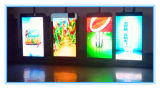 P5 Cartel LED pantalla al aire libre a todo color LED pantalla