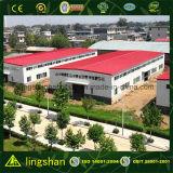 Estructura de acero Almacén de almacén industrial (LS-SS-102)