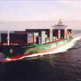 O melhor agente de frete do transporte do oceano de China a Manaus/Brasil