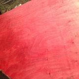 El álamo/la madera dura/la película de la base 18m m de Combi hicieron frente a la madera contrachapada