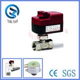 Fabricante experiente da válvula motorizada para o aquecimento e o frio (BS-858-20)