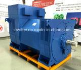 6.6kv高圧二重ベアリングAC Pmg交流発電機