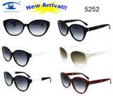 Солнечные очки цены Resonable высокого качества типа способа ацетата (5252)