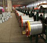 Wire/1.2mmによって電流を通される鉄ワイヤーを結合する柔らかい電流を通された18gauge