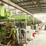 10MW Elektrische centrale de dubbele van de Brandstof (HFO&GAS)