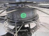 Bici eléctrica gorda de 250 W