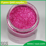 Plastic에 폴리에스테 Glitter Powder Kg Used