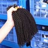Da ponta italiana do prego U da fusão da queratina das extensões do cabelo da fusão extensão natural Remy indiano 1g/S reto humano 100g do cabelo da cor