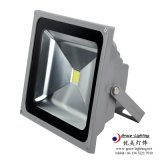 Diodo emissor de luz Manufacturer Flood Light de IP66 100W
