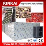 Sécheur de légumes déshumidifié circulant à l'air chaud