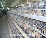 La pollastra Fram di automazione mette in gabbia la strumentazione (un tipo blocco per grafici)