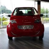 範囲の贅沢な電気自動車料金ごとの217マイル