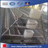 Jaulas Aves/Gallinas-Batterie-Henne-Rahmen (BDT025-JF-25)