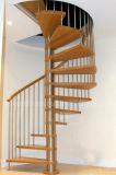 Abrir a escadaria espiral de madeira do aço inoxidável do montante com balaustrada vertical