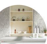 Mosaico di marmo bianco di esagono di Carrara (CFS1101)