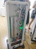 Alma Feminlift HF-Bruch-CO2 Laser für die Narbe-Abbau-Haut, die Akne-Narbe-Knicken-Behandlung-vaginale Verjüngung erneuert