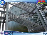 Scala/piattaforma/scale d'acciaio esterne (FLM-SP-006)