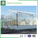 Serre chaude en verre d'acier inoxydable d'agriculture