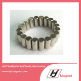 Forte neodimio personalizzato eccellente dell'anello N48 a magnete permanente con il campione libero