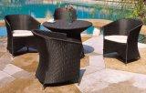 Cadeiras ajustadas do Rattan dos restaurantes ao ar livre com mesa de centro