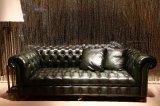 يفتن شسترفيلد جلد أريكة