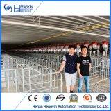 Hengyin обеспечивает вам все оборудование фермы оборудования/свиньи Piggery комплекта
