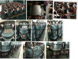 Bombas de água submergíveis elétricas 220V/380V de Qdx15-7-0.55 Dayuan, 0.75HP