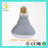 Stoele Br30 8W LED Spur, die Glühflut-Birnen beleuchtet