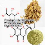 Самый лучший продавая желтый порошок Baicalin CAS: 21967-41-9