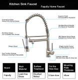 Il rubinetto della cucina di Flg con tir in giùare il rubinetto del dispersore dell'imbarcazione