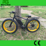 판매를 위한 중앙 모터 뚱뚱한 타이어 쉬운 승차 전기 자전거
